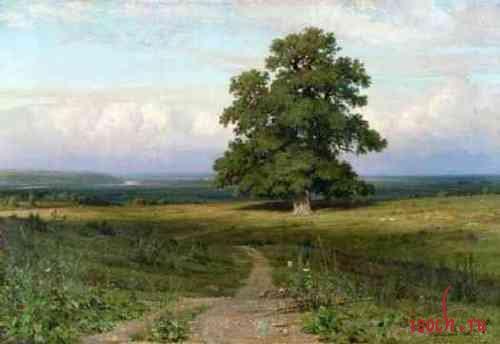 Картина И.И. Шишкина «Среди долины ровныя»