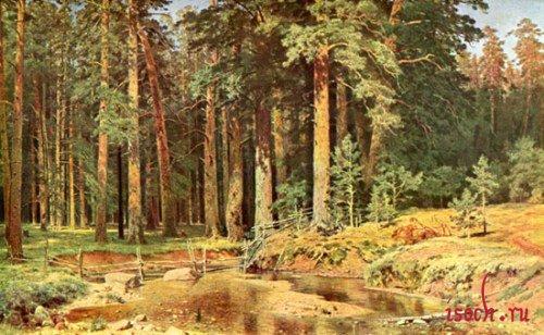 Картина И.И. Шишкина «Корабельная роща»