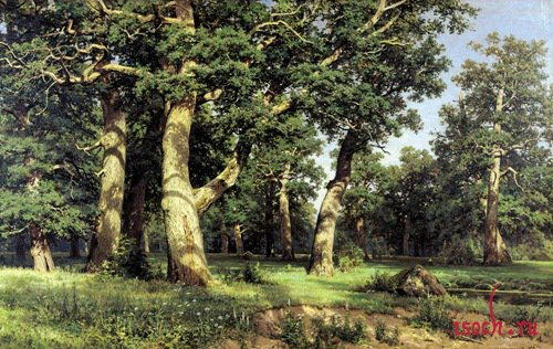 Картина И.И. Шишкина «Дубовая роща»