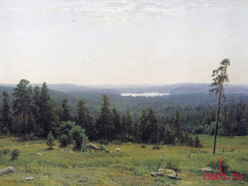 Картина И.И. Шишкина «Лесные дали»